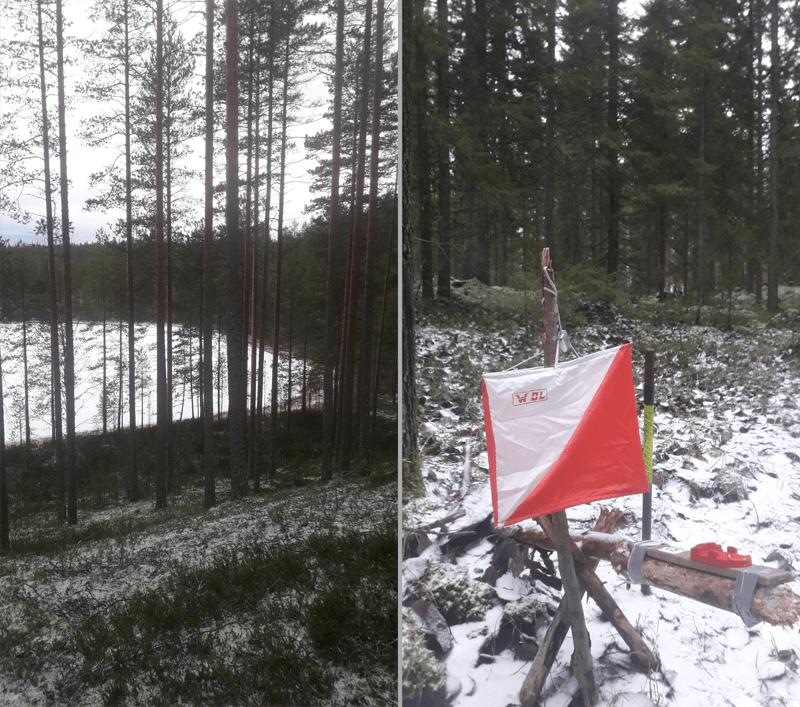 Postilaatikko Jyväskylä